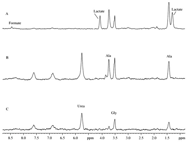 Time course of changes in the 2H-NMR spectra of mitochondrion samples with added antibiotics.