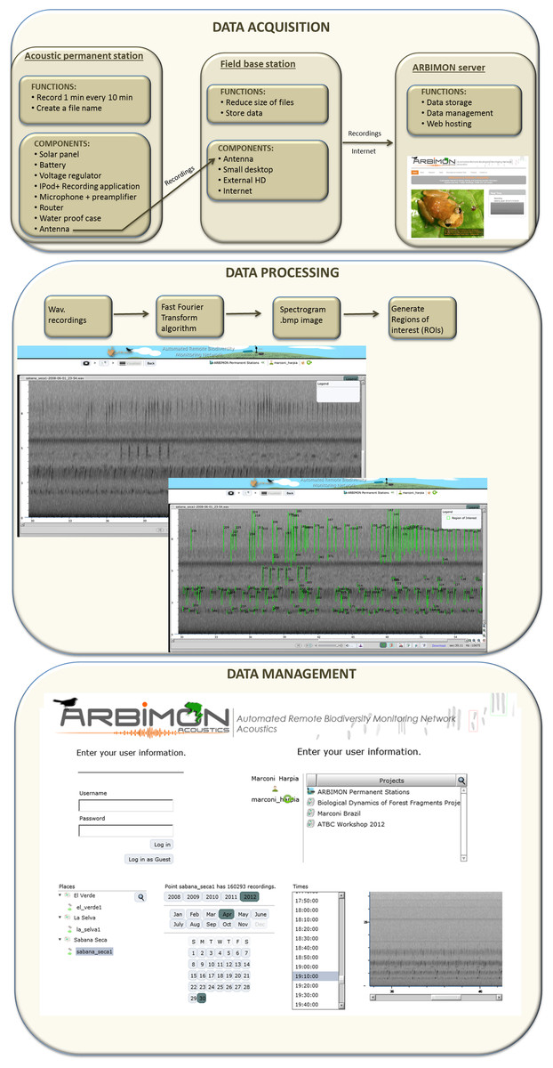 real time bioacoustics monitoring and automated species rh peerj com