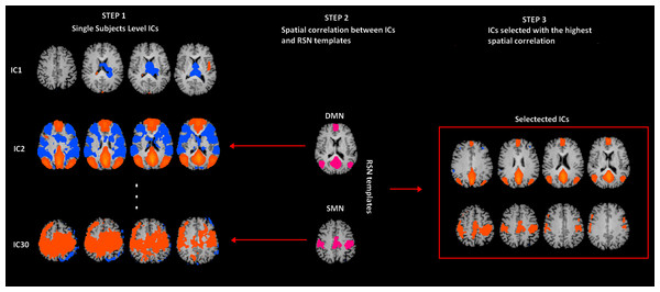 rs-fMRI processing.