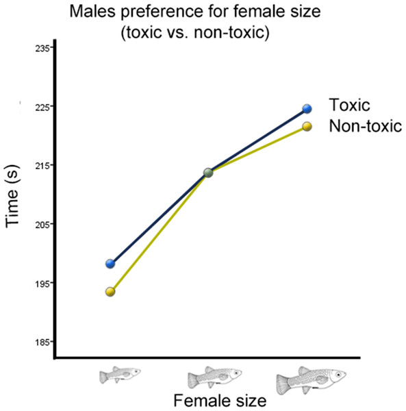 Male preference for female size (toxic vs. non-toxic).