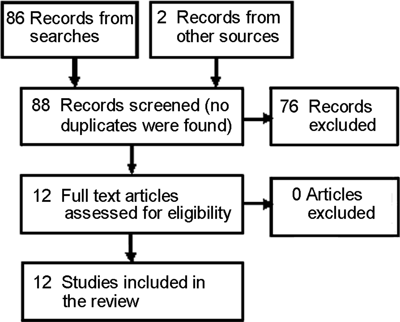 effect sample essay outline template