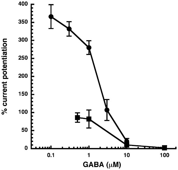 Influence of the GABA concentration.