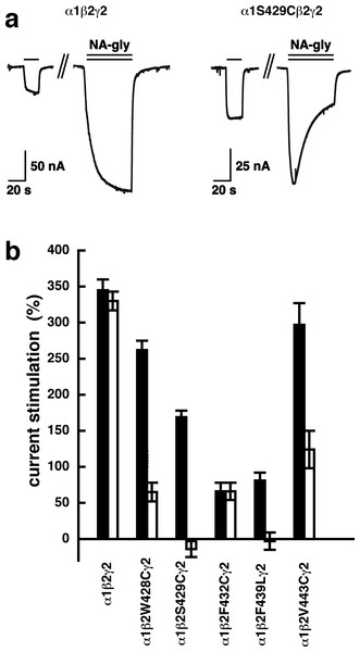 Effect of point mutations that reduced potentiation by 2-AG on the potentiation of NA-glycine.