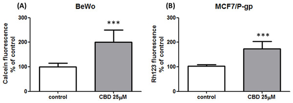 Non-cell type specific inhibition of P-gp by CBD 25 µM.