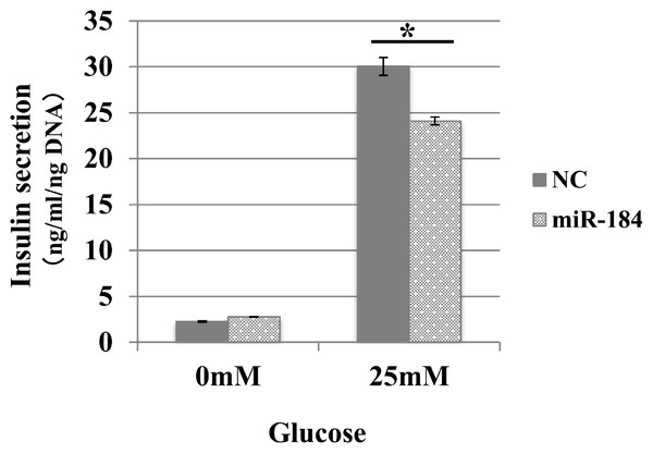 MiR-184 inhibits glucose-induced insulin secretion in the MIN6 islet β-cell line.
