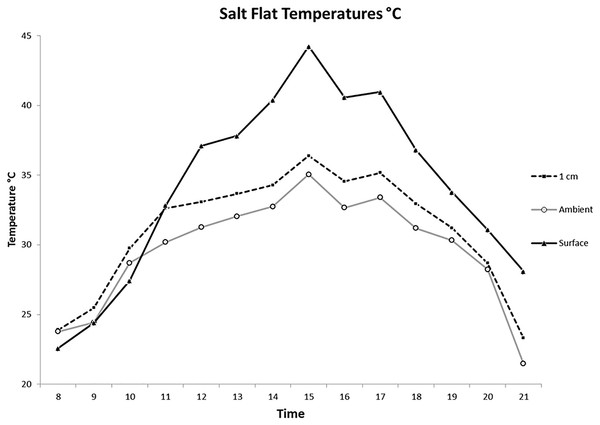 Average salt flat temperatures by hour.