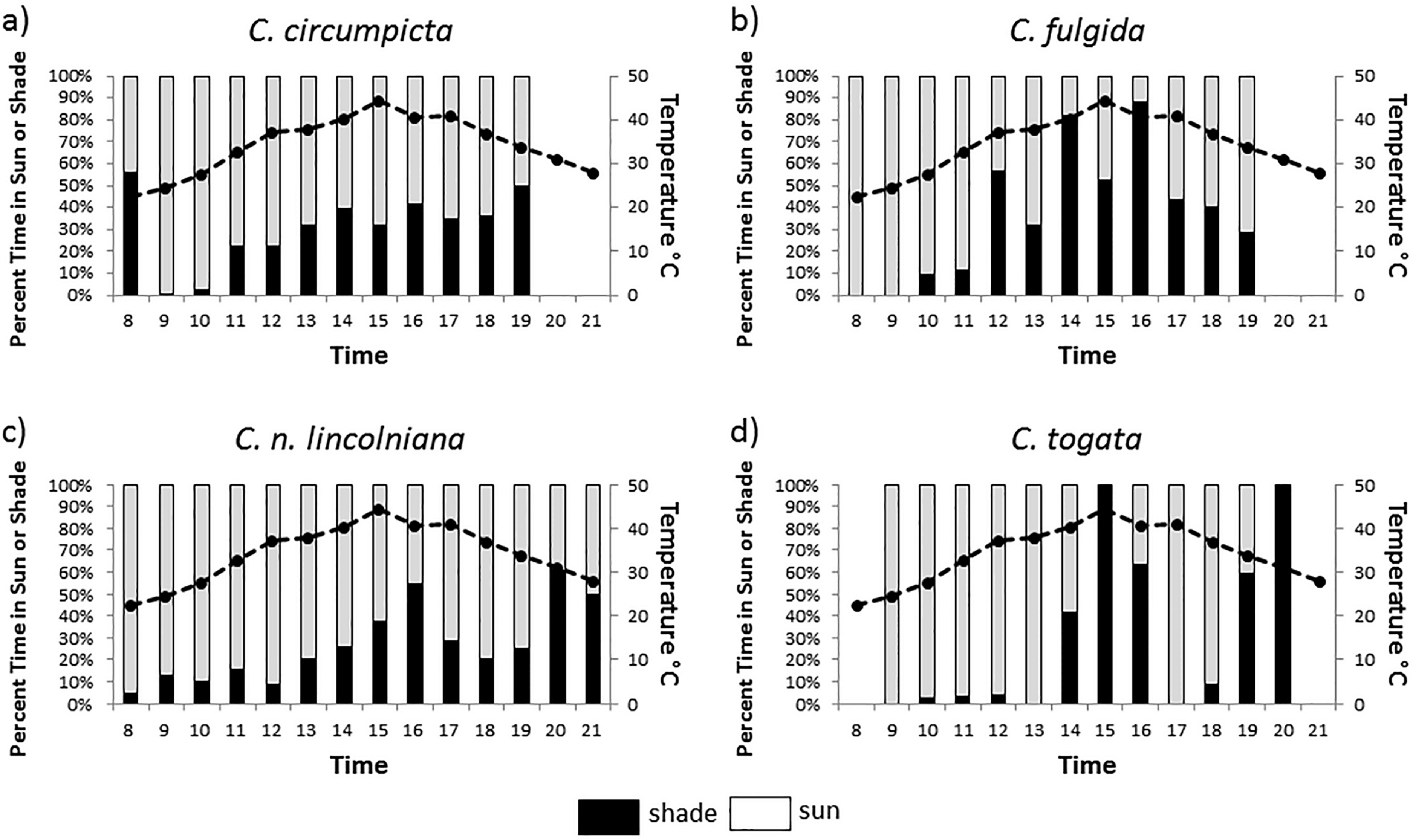 behavioral niche partitioning in a sympatric tiger beetle