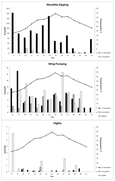 Average mandible dips, wing pumps, and flight events per hour.