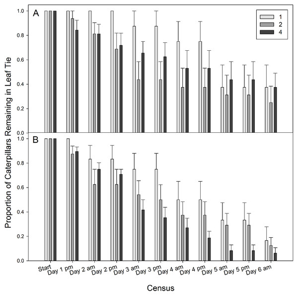 The proportion of caterpillars remaining in a tie for each density treatment.