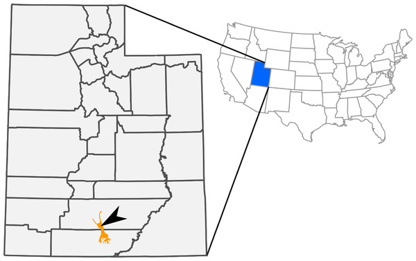 Outcrops of Kaiparowits Formation (orange) within the state of Utah, USA.