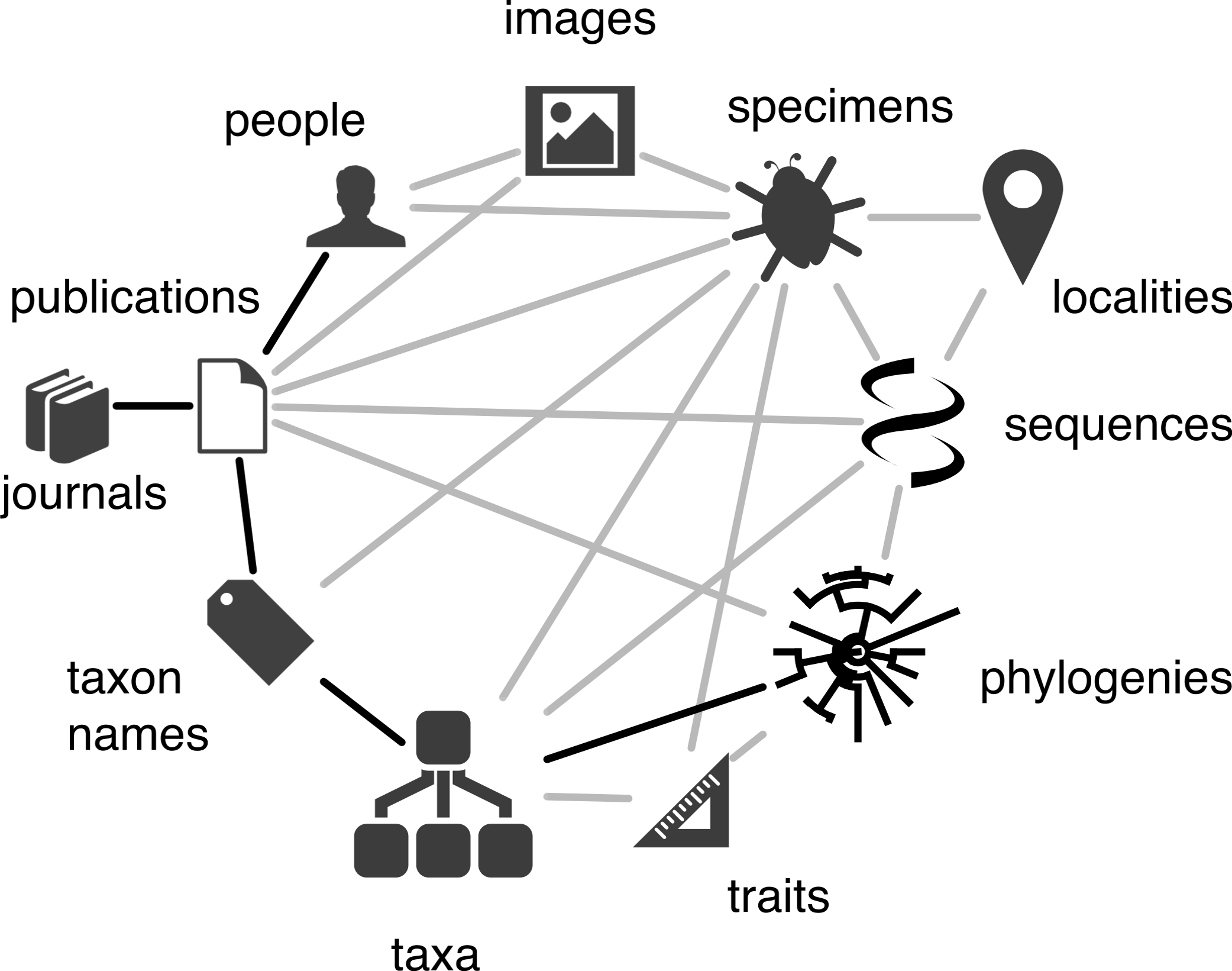 bionames  linking taxonomy  texts  and trees  peerj