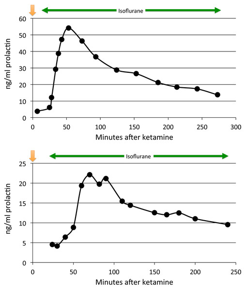 Plasma prolactin levels over time with anesthesia alone.
