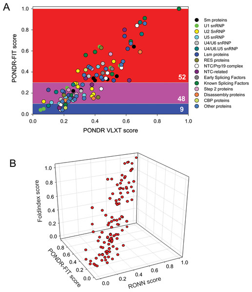 Combined analysis of intrinsic disorder propensities of the yeast spliceosomal proteins using the outputs of different disorder prediction tools.
