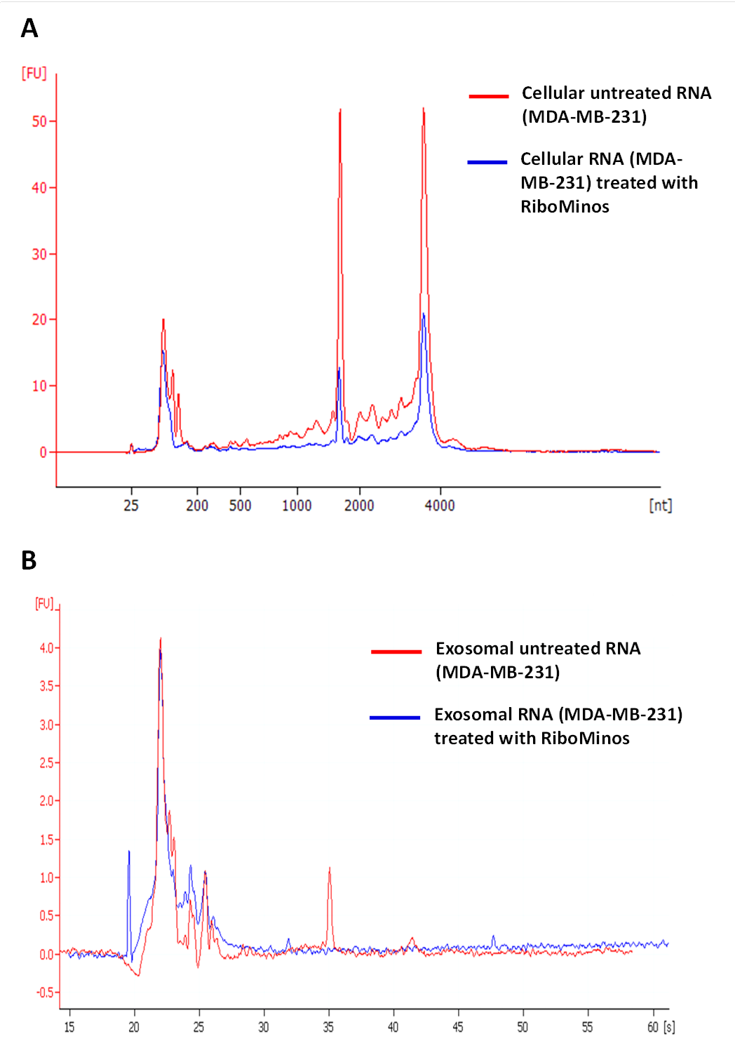 Characterization Of Rna In Exosomes Secreted By Human Breast Cancer Cell Lines Using Next
