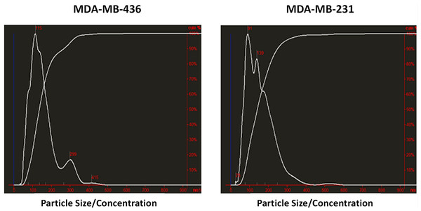 Analysis of exosomes produced by breast cancer cell lines, MDA-MB-436 and MDA-MB-231, with Nanosight LM10-HS instrument.