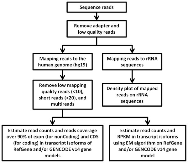 Flowchart of RNA-seq data analysis.