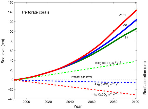 Accretion potential of perforate corals and predicted sea-level rise.