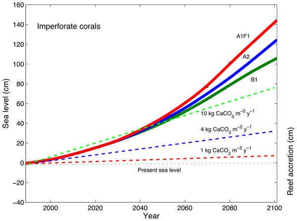 Accretion potential of imperforate corals and predicted sea-level rise.