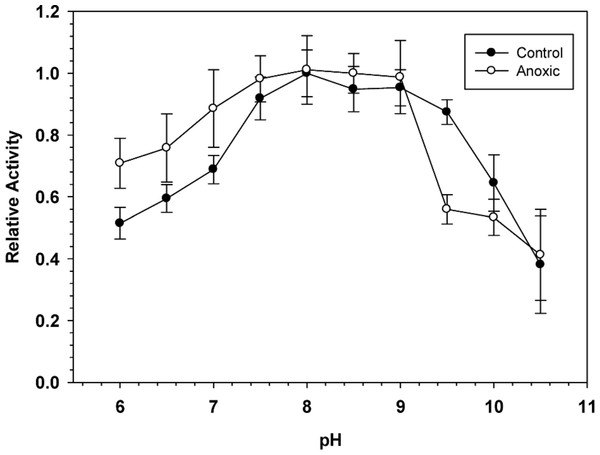 Effect of pH on the activity of hepatopancreas G6PDH from control and anoxic L. littorea.