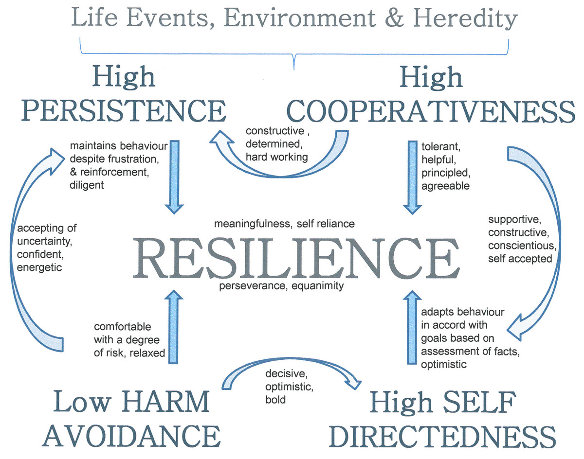 The Relationship Between Resilience And Personality Traits In