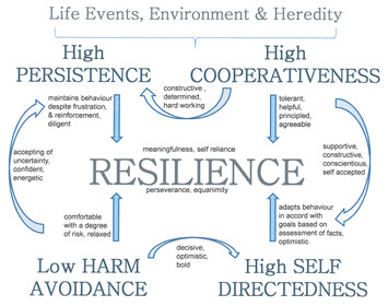 The relationship between resilience and personality traits for Life of pi character development
