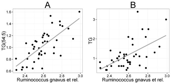 Association between Ruminococcus gnavus et rel. and serum triglyceride (TG) lipids.