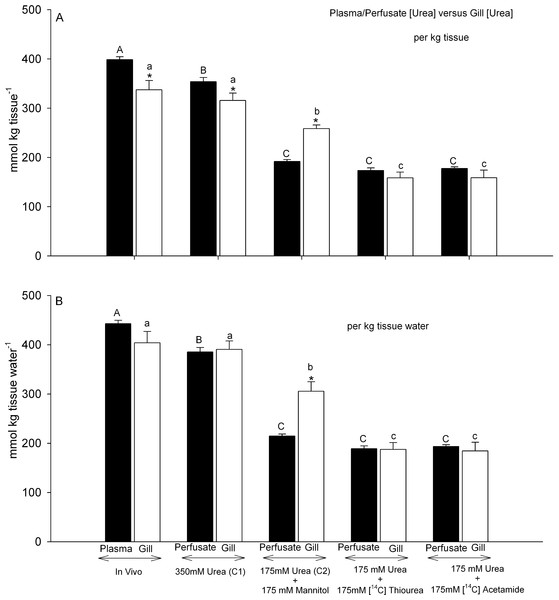 Urea concentrations in plasma or perfusate versus those measured simultaneously in gill tissue.