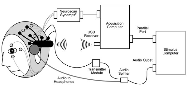 Schematic diagram of simultaneous research EEG system (Neuroscan Synamps2, in grey) and gaming EEG system (Emotiv EPOC, in black) setup.