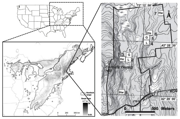 Location of the Harvard Forest Hemlock Removal Experiment.