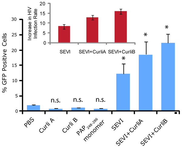 Curli nucleated SEVI fibers enhance HIV infectivity to a similar degree as SEVI generated de novo.