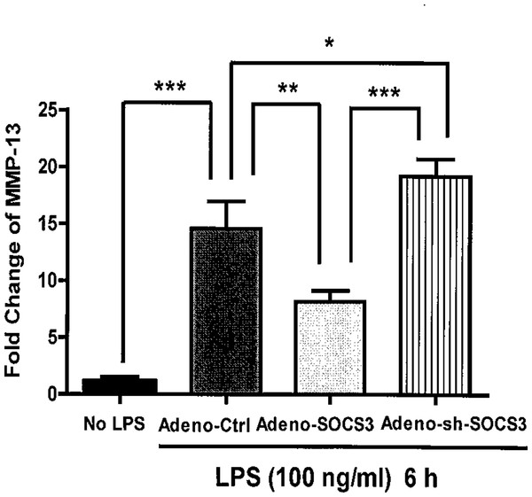 Critical role of SOCS3 in regulating LPS-induced MMP-13 gene expression in primary calvarial osteoblasts.