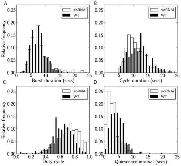 Quantification of motor activity in slo RNAi larvae.