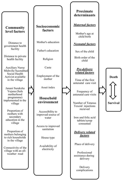 Conceptual framework showing factors affecting neonatal mortality.