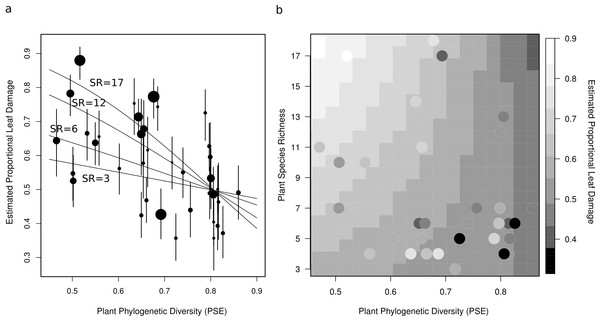 Two figures showing the relationship between estimated proportional leaf damage and plot-level plant species richness and phylogenetic diversity.