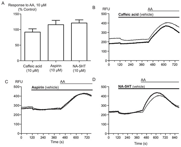 Inhibitors of arachidonic acid metabolism do not affect arachidonic acid activation of TRPA1.