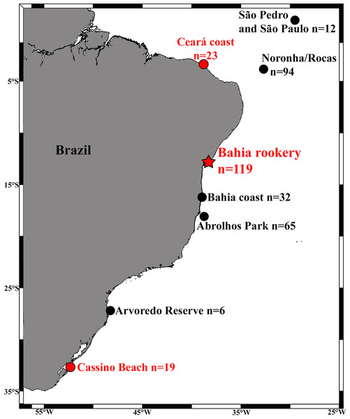 Locations and sample sizes of genetically-described immature hawksbill areas (dots) and the Bahia rookery (red star) in Brazil.