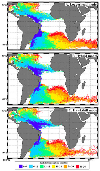 Virtual particles leaving the Bahia rookery during loggerhead (A), hybrid (B) and hawksbill (C) hatching seasons.