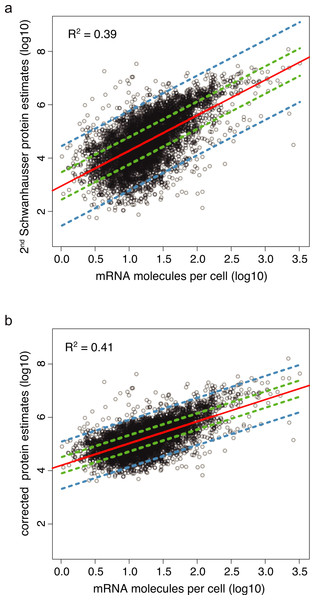 Protein abundance estimates versus mRNA abundances.