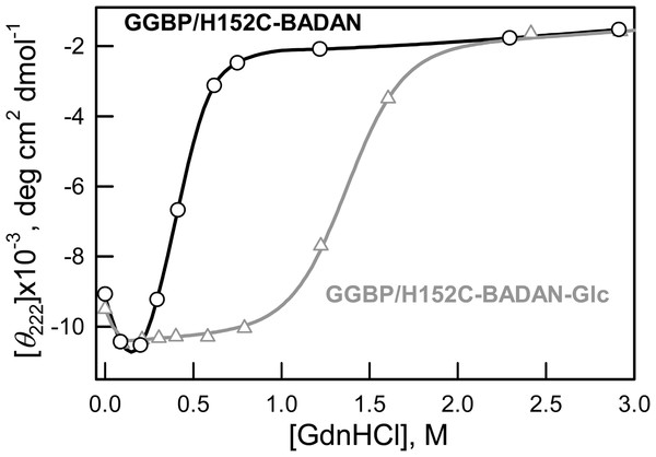 Changes of ellipticity at 222 nm of GGBP/H152C-BADAN and GGBP/H152C-BADAN–Glc on the GdnHCl concentration.