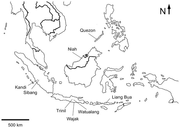 Map of Insular Southeast Asia indicating the location of localities with fossil bird remains.