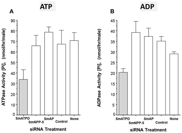 Apyrase activity of ecto-enzyme suppressed and control parasites.