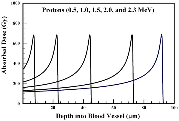 Absorbed dose profiles for 0.5 (far left curve), 1.0, 1.5, 2.0, and 2.3 (far right curve) MeV protons in water.