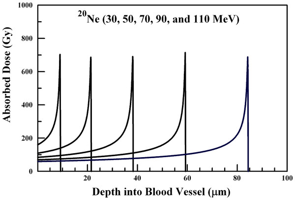 Absorbed dose profiles for 30.0 (far left curve), 50.0, 70.0, 90.0, and 110.0 (far right curve) MeV 20Ne ions in water.