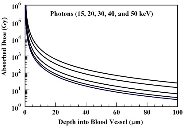 Absorbed dose profiles for 15.0 (top curve), 20.0, 30.0, 40.0, and 50.0 (bottom curve) keV photons in water.