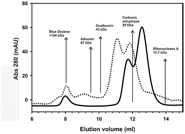 Analytical size exclusion chromatography.