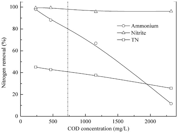Effect of organic matter on anammox performance treating pretreated swine manure.