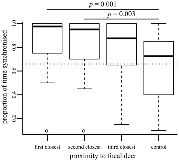 Boxplot showing the proportion of time that behaviour of the focal individual was synchronised with neighbours of differing social distances.