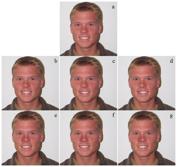 A set of pictures used for attractiveness evaluation.