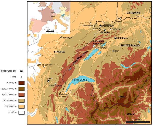 Map showing the location of the Late Jurassic turtle sites throughout the Jura Mountains (Switzerland and France).