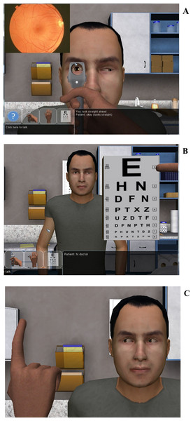 Demonstration of the three visual tests that can be performed within NERVE.